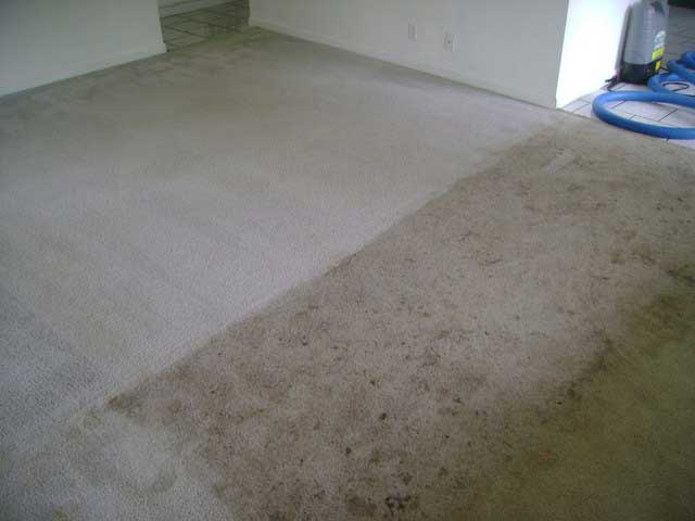 Modern Carpet Cleaning Oroville Ca
