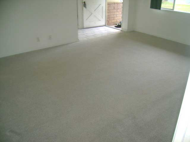 Carpet-Cleaning3