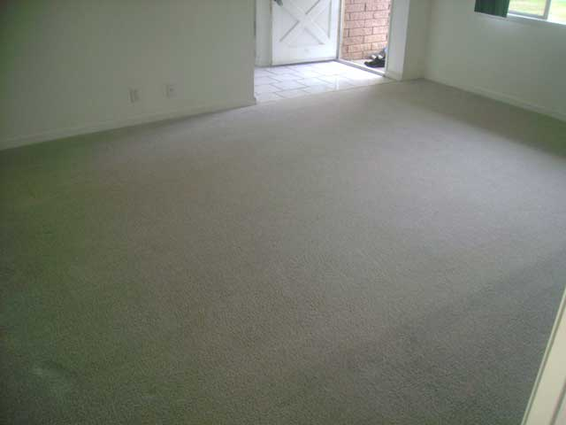 Carpet-Cleaning4